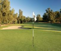 Penina Golf The Henry Cotton Championship Course